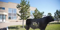 Kusto Group's Kazbeef Expands its Production Capabilities with New Processing Plant in Akmola Region